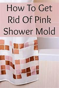 How to get mold out of bathroom walls 28 images for How to get rid of mold in the bathroom walls
