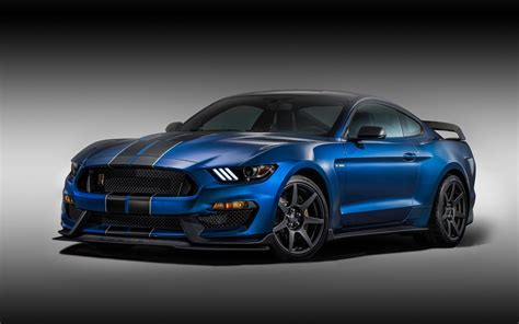 ford mustang shelby gtr wallpaper hd car wallpapers