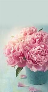 les 466 meilleures images du tableau soeur sur pinterest With affiche chambre bébé avec livraison fleurs domicile pivoines