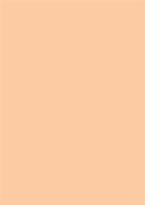 solid orange cream color photo backdrop   solid