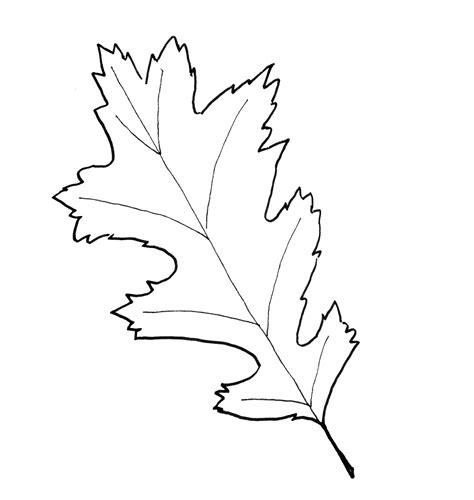 fall leaf pattern printables  paint  blog