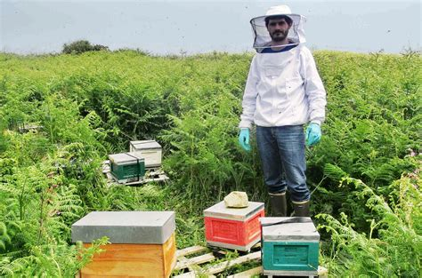 chambre agriculture 08 apiculture une bien mauvaise ée 2016 thinktanks fr