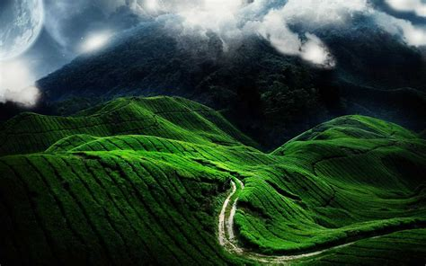 amazing green landscape hd hd nature wallpapers