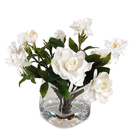the shop gift duo gardenia gardenia bouquet