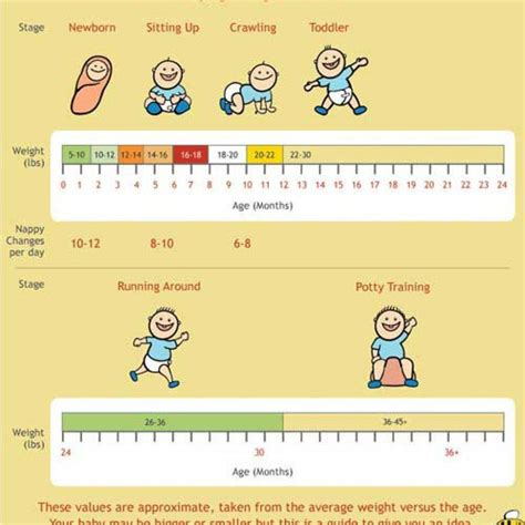 Baby Weight Chart Baby Weight And Height