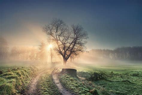 In Der Natur by Natur Die Top Motive Aus Dem Fotowettbewerb Audio