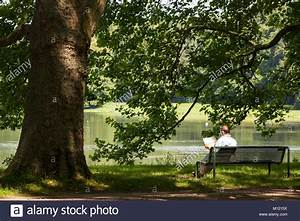 Reading Newspaper On A Bench Stock Photos & Reading ...