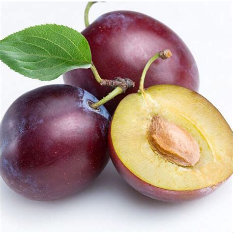 where did plums originate popular chinese plum fruit buy cheap chinese plum fruit lots from china chinese plum fruit