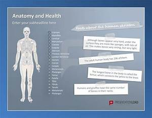 powerpoint templates free anatomy choice image With anatomy ppt templates free download