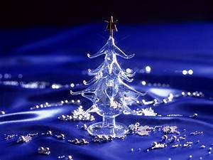 Beautiful Christmas Trees Myfreetutorials Tree Free Large