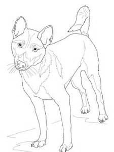 guinea singing dog coloring page  printable coloring pages