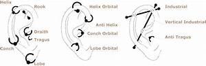 ilapunmoun: body piercing chart