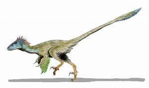 U00bfcu U00e1les Eran Los Dinosaurios M U00e1s Peligrosos Y Feroces
