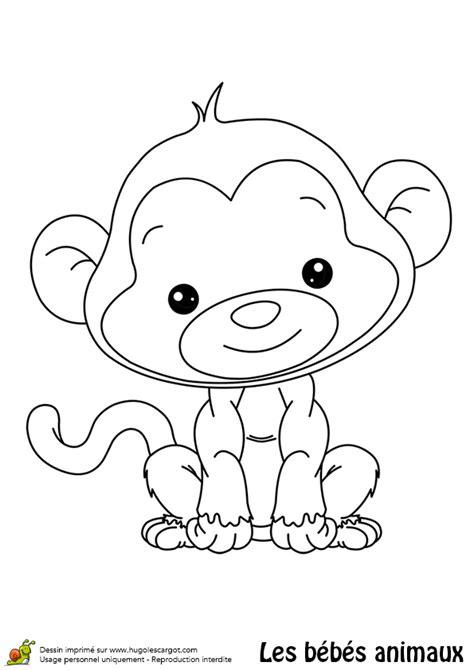 jeux de la jungle cuisine coloriage bébé singe hugolescargot com