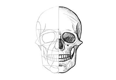How Draw Skull Themekeeper