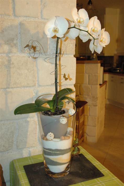 soigner les orchidees en pot une orchid 233 e mise en beaut 233 le phare de l esp 233 rance