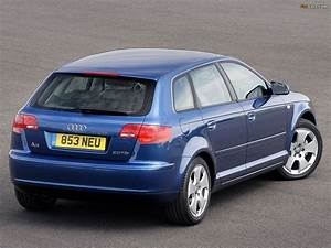 Audi A3 2004 : 2008 audi a3 sportback 2 0 tdi related infomation specifications weili automotive network ~ Gottalentnigeria.com Avis de Voitures