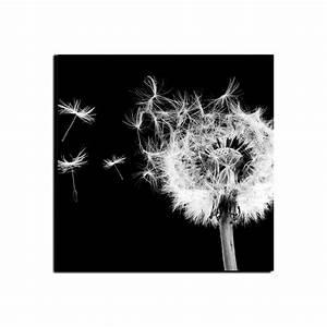 Pusteblume Schwarz Weiß Vögel : leinwandbild pusteblume schwarz wei ~ Orissabook.com Haus und Dekorationen
