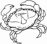 Crab Coloring Pages Crabs Printable Drawing Sheet Template Animal Marine Animals Sketch Seaweed Paper sketch template