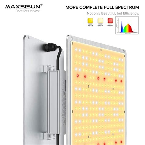 So what's the big deal with these things? MAXSISUN 1000W/1500W PB Series Quantum Board LED Grow ...