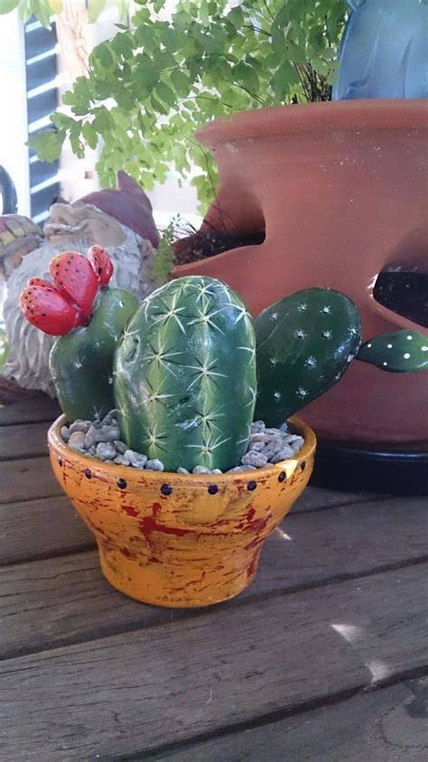 painted rock cactus easy  grow     afternoon