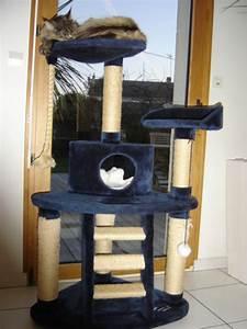 Arbre A Chat Solide : arbre a chat gros poteau ~ Mglfilm.com Idées de Décoration