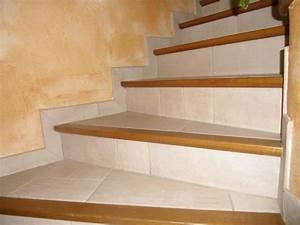 Habillage Escalier Interieur : photos gt carrelage ~ Premium-room.com Idées de Décoration