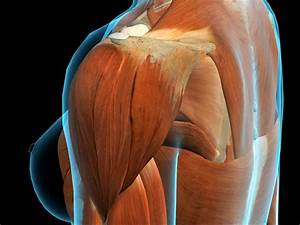 Knee Pain  14 Home Remedies
