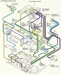 1996 Mazda Millenia S Diagram To Locate Purge Control