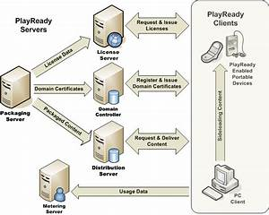 Illustration Of How Content And Licenses Flow Between Servers And Clients In A Playready Ecosystem