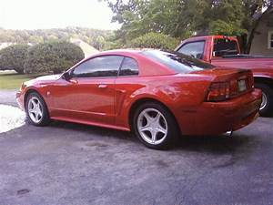 1999 Ford Mustang GT For Sale | Harrison Tennessee