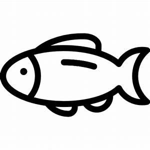 Fish - Free animals icons