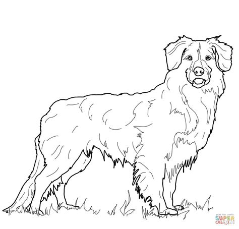 Kleurplaat De Goden by Golden Retriever Puppy Coloring Pages Printable Coloring