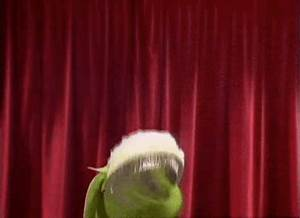 Page 8 for Kermit The Frog GIFs - Primo GIF - Latest ...