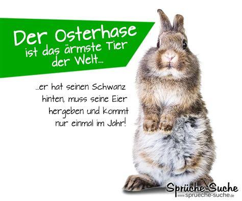 Lustiger Spruch Zu Ostern  Der Osterhase Sprüchesuche