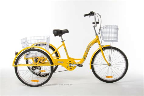 Trike Bike Adult Tricycle 24