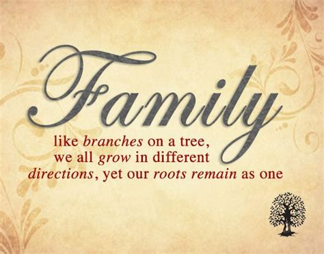 family  branches   tree   grow