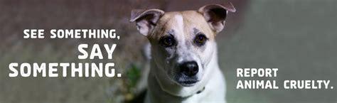 action    prevent animal cruelty