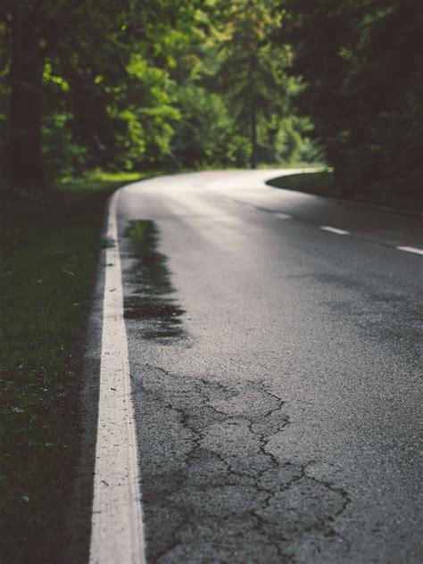 grey concrete road  trees  white sky
