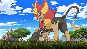 Pokemon Saison 19 Episode 1 : pok mon season 19 episode 4 watch pokemon episodes ~ Dailycaller-alerts.com Idées de Décoration