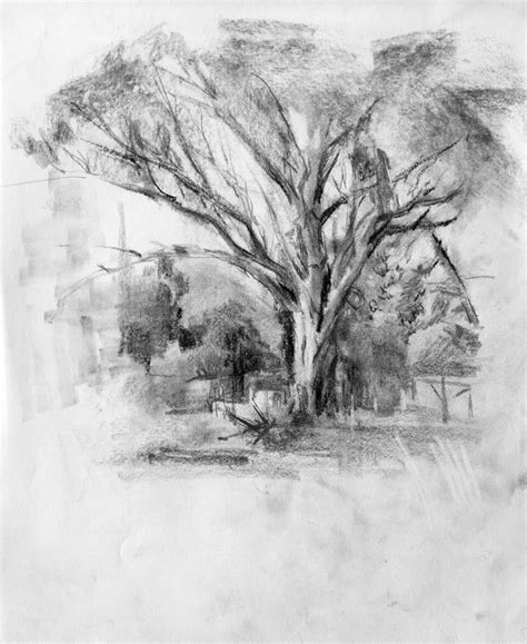 landscaping sketches the main loop charcoal drawing a logical method video included