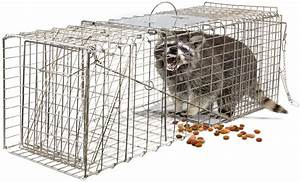 Humane Animal Trap 32x12x12 Steel Cage Live Rodent Control