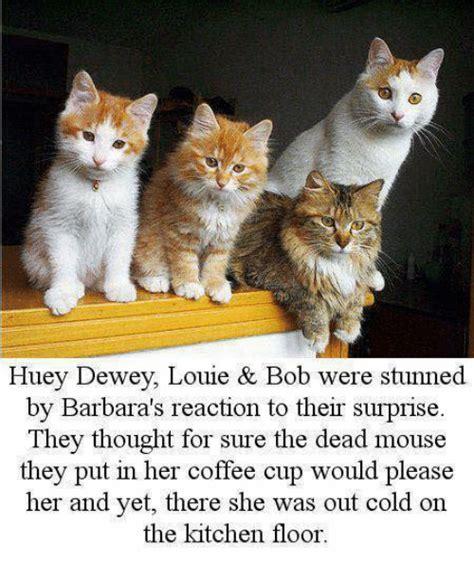 Huey S Kitchen Memes by Huey Dewey Louie Bob Were Stunned By Barbara S Reaction