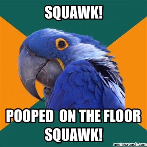 Parrot Meme - funny bird
