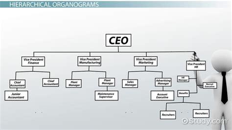 organogram definition structure
