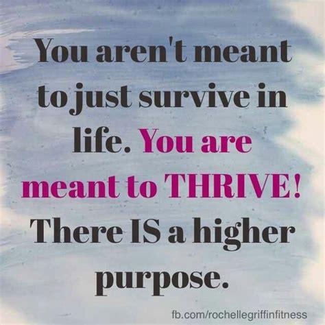 thrive quotes quotesgram