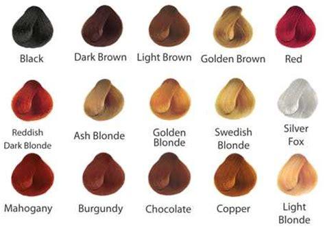 Surya Henna Color Chart