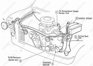 Diagram  Ford Transit Wiring Loom Diagram Full Version Hd
