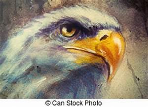 Tache De Couleur Peinture Fond Blanc : aigle ouvert ailes aigle blanc voler fond illustration ~ Melissatoandfro.com Idées de Décoration