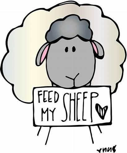 Sheep Clipart Feed Clip Church Melonheadz Lds